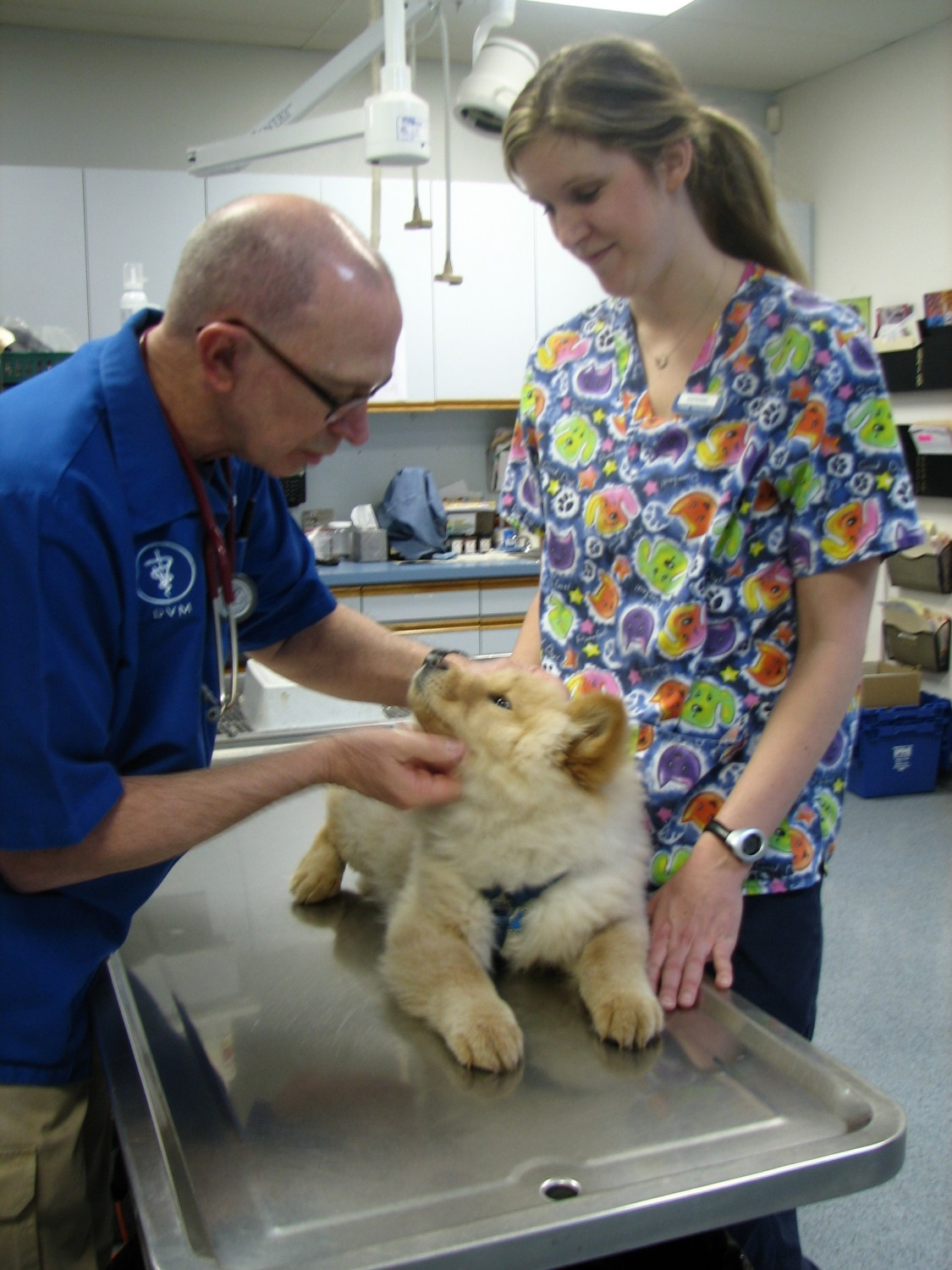 Dr. Lyle Bartel at Ahwatukee Animal Care Hospital