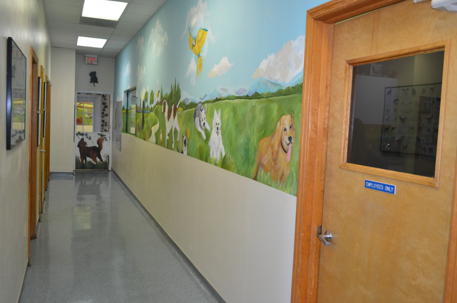 Ahwatukee Animal Care Hospital Hallway to Daycare and Boarding
