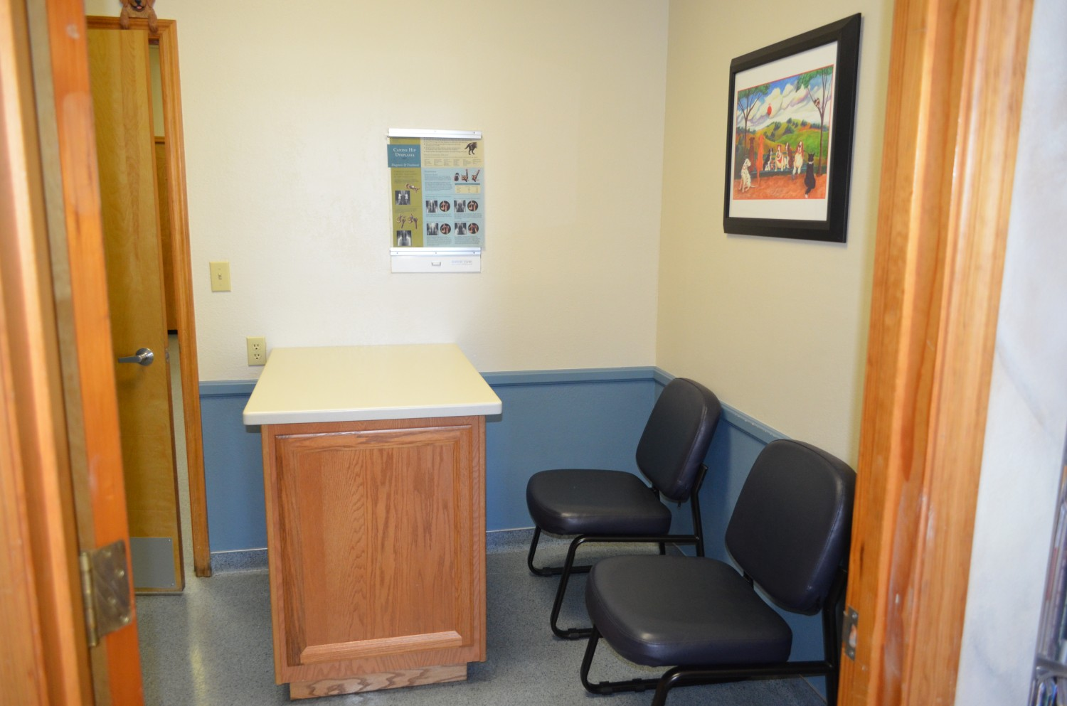 Ahwatukee Animal Care Hospital Exam Rooms