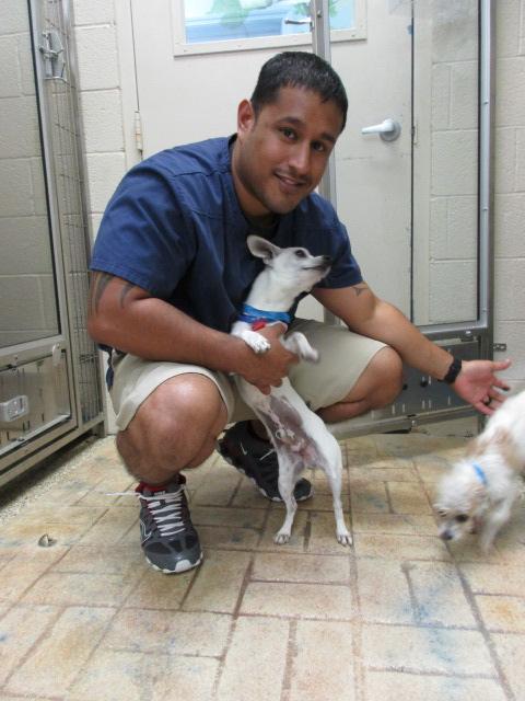 Boarding staff at Ahwatukee Animal Care Hospital