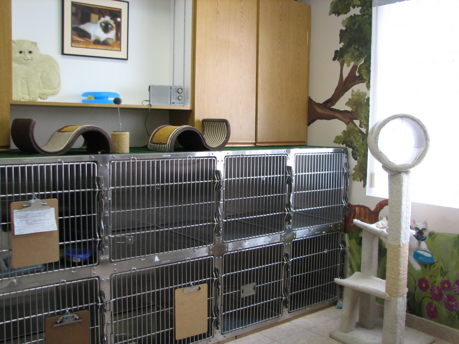 Pet Resort at Ahwatukee Animal Care Hospital. Boarding for your pet!