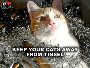 Tinsel dangers - Ahwatukee Animal Care Hospital and Pet Resort